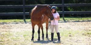 Equestrian at The Glenholme School