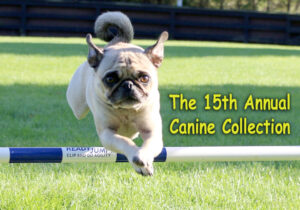 GGlenholme School 15th Annual Canine Collection